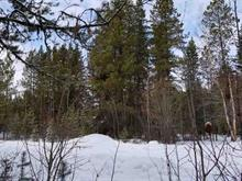 Lot for sale in Valemount - Town, Robson Valley, 1225 Canoe View Place, 262448084 | Realtylink.org