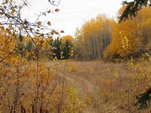 Lot for sale in Fraser Lake, Vanderhoof And Area, Hanson Stake Road, 262113372 | Realtylink.org