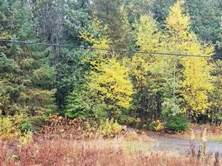 Lot for sale in Stewart/Cassiar, Stewart, Terrace, Block B Nass Road, 262333856 | Realtylink.org