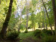 Lot for sale in Mayne Island, Islands-Van. & Gulf, 279 Mariners Way, 262302442 | Realtylink.org