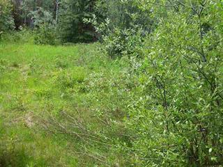 Lot for sale in Forest Grove, 100 Mile House, Lot 8 Chuckwagon Trail, 262301410 | Realtylink.org