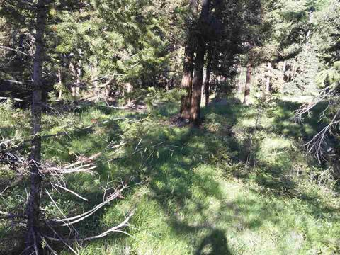Lot for sale in 108 Ranch, 108 Mile Ranch, 100 Mile House, Lot 15 Kyllo Road, 262312516 | Realtylink.org