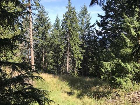 Lot for sale in Saturna Island, Islands-Van. & Gulf, 408 East Point Road, 262221016 | Realtylink.org