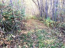Lot for sale in Hazelton, Smithers And Area, Lot 26 Chappel Road, 262350566 | Realtylink.org