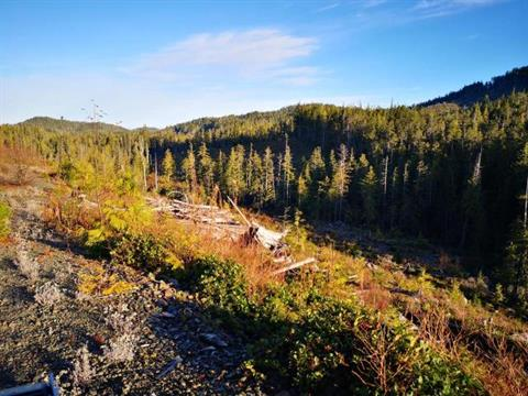 Lot for sale in Port Hardy, Port Hardy,  Holberg Road, 455831   Realtylink.org