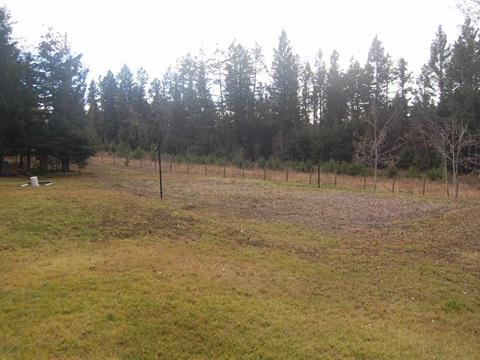 Lot for sale in 108 Ranch, 108 Mile Ranch, 100 Mile House, Lot 98 Kitwanga Drive, 262341217 | Realtylink.org