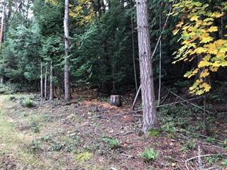 Lot for sale in Mayne Island, Islands-Van. & Gulf, 515 Whalen Road, 262437668 | Realtylink.org