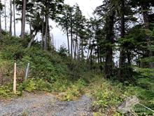Lot for sale in Ucluelet, PG Rural East, 854 Marine Drive, 453209 | Realtylink.org