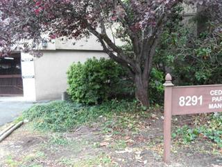 Apartment for sale in Brighouse, Richmond, Richmond, 210 8291 Park Road, 262421202 | Realtylink.org