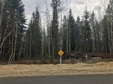 Lot for sale in Valemount - Town, Valemount, Robson Valley, 1035 18th Avenue, 262385924 | Realtylink.org