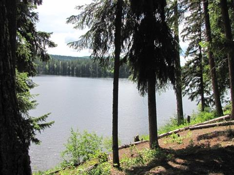 Recreational Property for sale in Horsefly, Williams Lake, 2255 McKinley Forest Service Road, 262407347   Realtylink.org