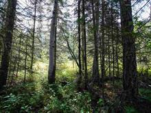 Lot for sale in Deka/Sulphurous/Hathaway Lakes, Lone Butte, 100 Mile House, Lot 284 Ludlom Road, 262408804 | Realtylink.org