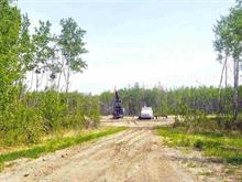 Lot for sale in Fort St. John - Rural E 100th, Fort St. John, Fort St. John, 221 Road, 262397030 | Realtylink.org