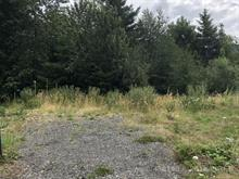 Lot for sale in Lake Cowichan, West Vancouver, 118 Beech Cres, 458140 | Realtylink.org