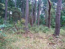 Lot for sale in Protection Island, Protection Island, 164 Pirates Lane, 457935 | Realtylink.org