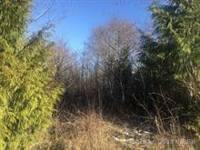Lot for sale in Ucluelet, Salmon Beach, 1158 4th Ave, 450793 | Realtylink.org
