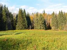 Lot for sale in Hazelton, Smithers And Area, 161 Helen Lake Road, 262377019 | Realtylink.org