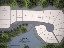 Lot for sale in Sumas Mountain, Abbotsford, Abbotsford, 141 4595 Sumas Mountain Road, 262364309 | Realtylink.org