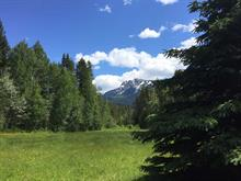 Lot for sale in Valemount - Rural West, Valemount, Robson Valley, 325 Sunnyview Road, 262200814 | Realtylink.org