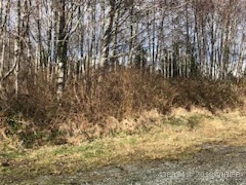 Lot for sale in Port Hardy, Port Hardy,  Park Drive, 438074   Realtylink.org