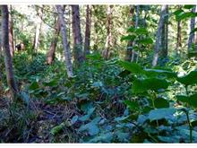 Lot for sale in Mayne Island, Islands-Van. & Gulf, 515 Waugh Road, 262278271 | Realtylink.org