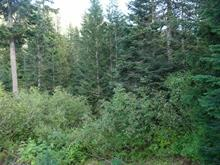 Lot for sale in Hemlock, Mission, Mission, 46870 Sakwi Creek Road, 262302237 | Realtylink.org