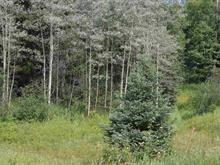 Lot for sale in Williams Lake - Rural East, Williams Lake, Williams Lake, Lot B Pritchard Road, 262311791 | Realtylink.org