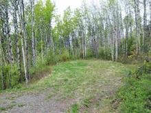 Lot for sale in Telkwa, Smithers And Area, Parcels A-B-D-E-F Trail Avenue, 262313457 | Realtylink.org
