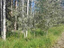 Lot for sale in Horse Lake, 100 Mile House, 6139 Lakeshore Drive, 262312131   Realtylink.org