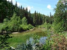 Lot for sale in Valemount - Rural West, Valemount, Robson Valley, Dl 5737 S 5 Highway, 262317508 | Realtylink.org