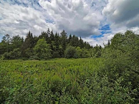 Lot for sale in Mission BC, Mission, Mission, 8871 Dewdney Trunk Road, 262337695 | Realtylink.org