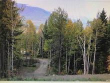Lot for sale in Valemount - Rural West, Valemount, Robson Valley, E 16 Highway, 262352828 | Realtylink.org