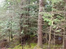 Lot for sale in Nanaimo, NOT IN USE, Lot 78 Sockeye Drive, 449849 | Realtylink.org