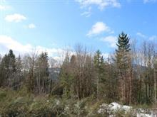 Lot for sale in Lake Cowichan, West Vancouver, Lt 5 Cowichan Lake Road, 451230   Realtylink.org