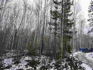 Lot for sale in Bouchie Lake, Quesnel, Quesnel, Lot 7 Winword Road, 262345879 | Realtylink.org