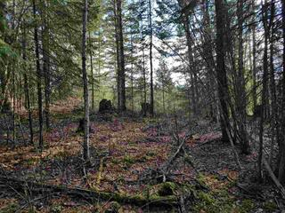 Lot for sale in Quesnel - Rural North, Quesnel, Quesnel, Lot 1 Greenacres Road, 262394791 | Realtylink.org