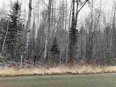 Lot for sale in Haldi, Prince George, PG City South, 9819 Birchill Crescent, 262439618 | Realtylink.org