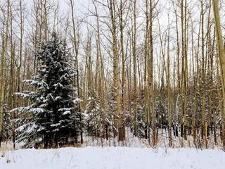 Lot for sale in Hudsons Hope, Fort St. John, Lot 4 Eagle Heights Drive, 262349599 | Realtylink.org