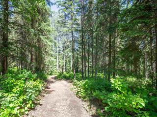 Lot for sale in Smithers - Rural, Smithers, Smithers And Area, Lot 8 Nouch Road, 262401578 | Realtylink.org