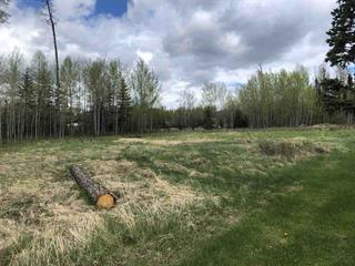 Lot for sale in Williams Lake - Rural East, Williams Lake, Williams Lake, Lot 1 Branch Drive, 262395679 | Realtylink.org