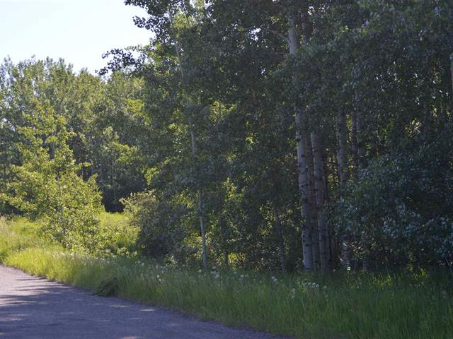 Lot for sale in Williams Lake - Rural East, Williams Lake, Williams Lake, Lot 8 Big Lake Road, 262453232   Realtylink.org