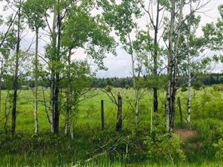 Lot for sale in Beaverley, PG Rural West, Lot 2 W Beaverley Road, 262397246 | Realtylink.org